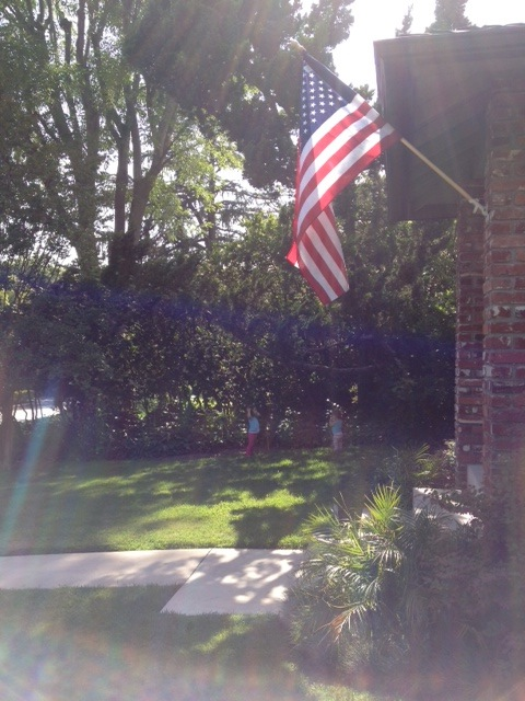 jill_simonian_memorial_day_flag_sunlight_daughters