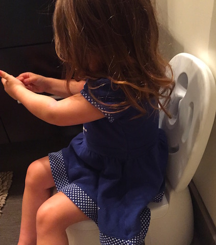 the_fab_mom_toddler_potty_training_challenges